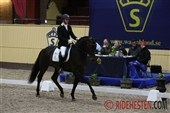 SWB: Stallion Test Day 4