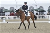 Para-dressage report Thursday By Rob Howell