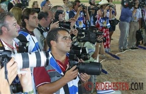 Ridehesten.com - Din portal til hesteverdenen