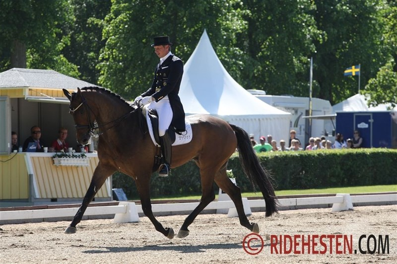 Swedish championships for dressage riders