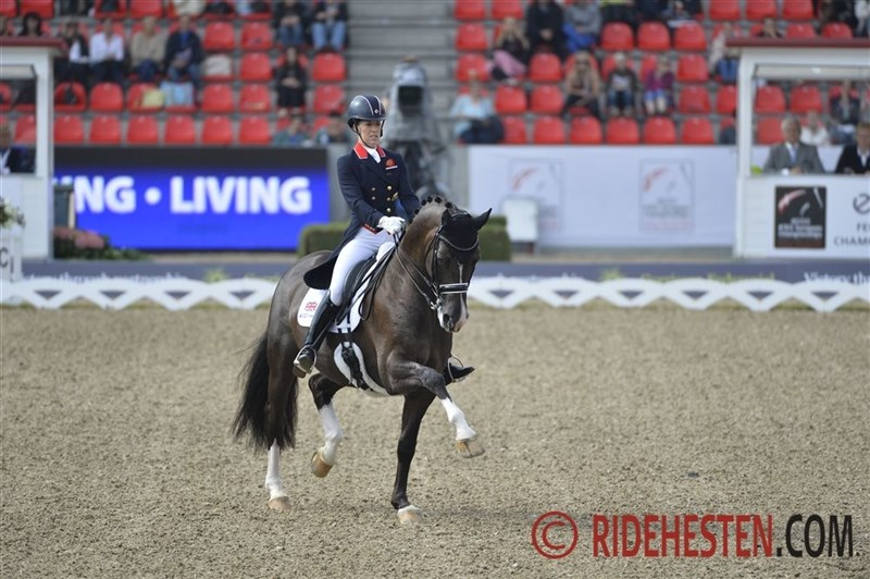 Grand Prix special Gold to Dujardin/Valegro