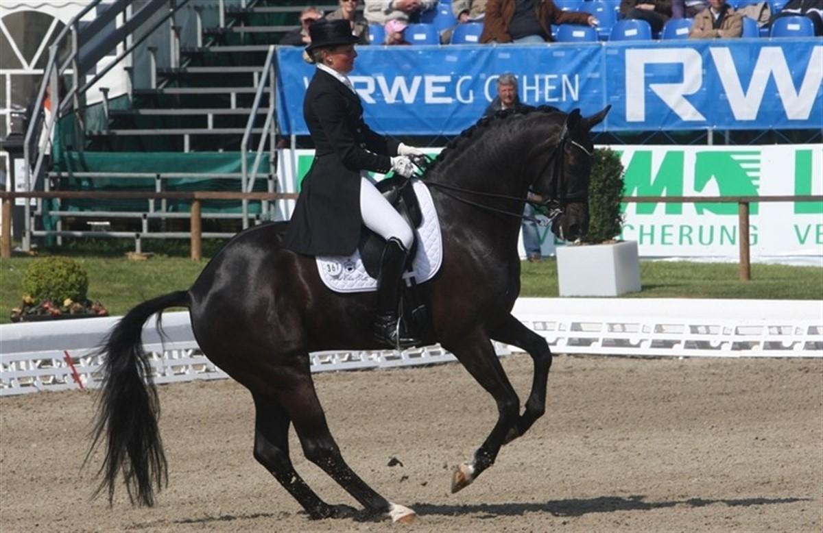 Følg stævnet i Hagen på Clipmyhorse - Ridehesten.com