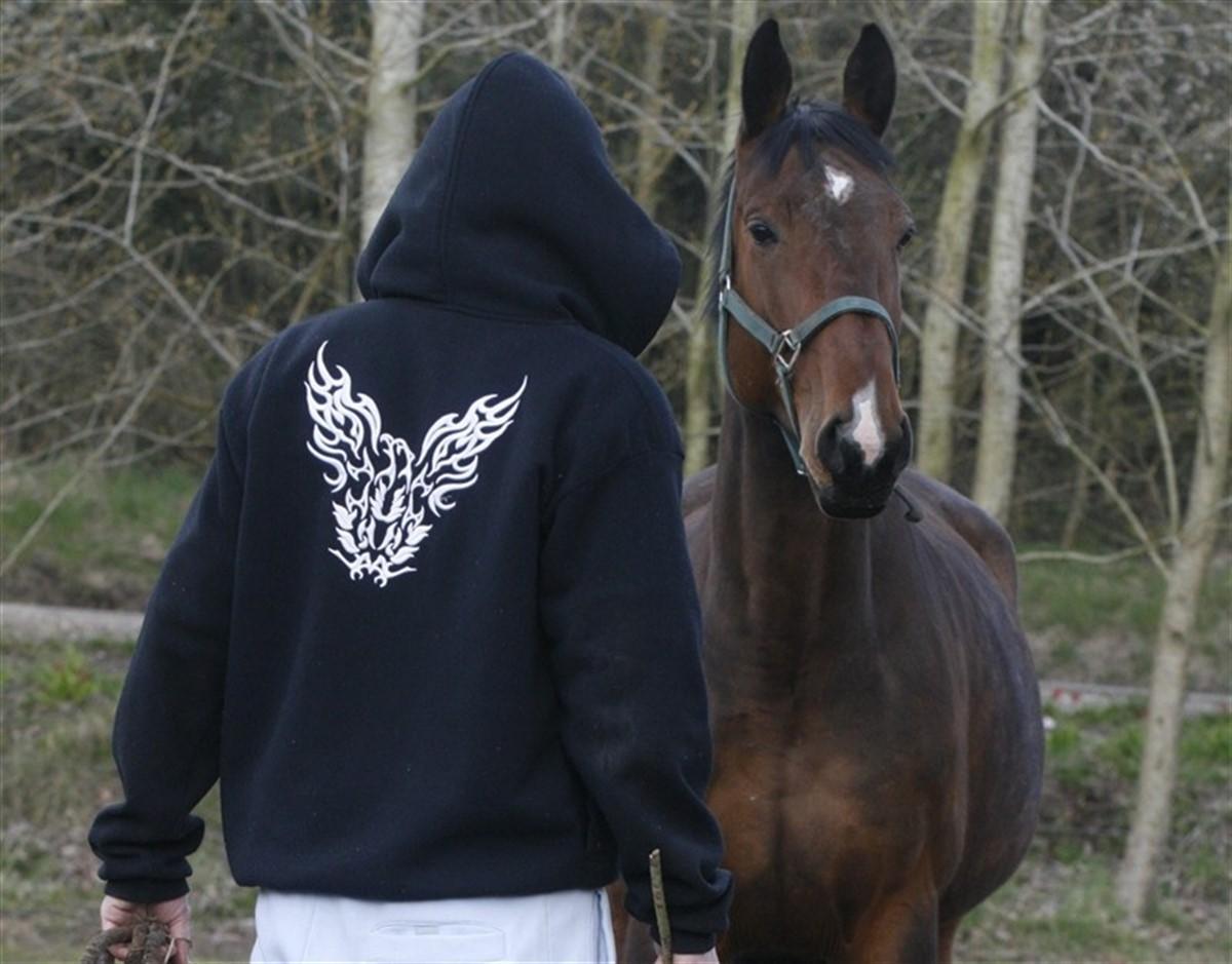 www escorte com sex bøsse med hest