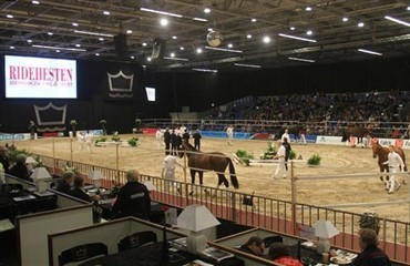 Billetsalg til Hingstekåringen 2012