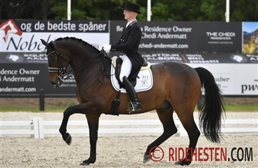 Danmark til FEI Nations Cup i Falsterbo