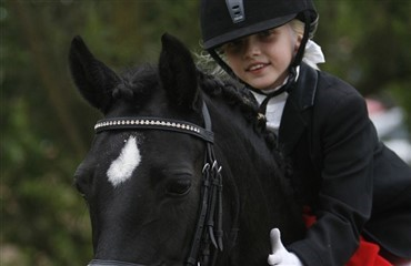Dressurtrupper for pony-, junior- og ungryttere