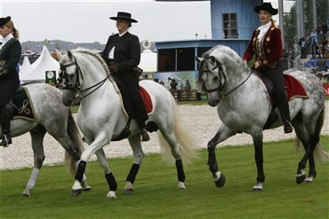 WEG Kentucky Cup 2009
