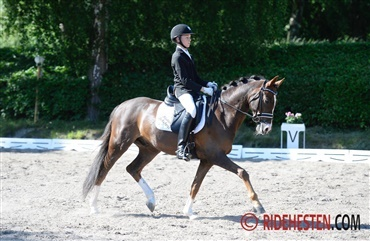 Horseworld Cup for ponyer og juniorer i Vejle