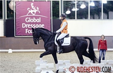 Harmoni på Global Dressage Forum 2012