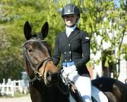 Hest til salg - DE NOIR OBBS