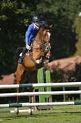 Hest til salg - RH´S HIGH FIVE
