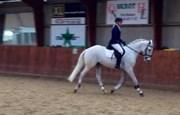 Hest til salg - LA-CANYO