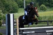 Hest til salg - CLEMENTS PENELOPE