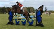 Hest til salg - ROBIN'Z RONJA