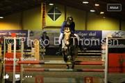 Hest til salg - SPOOGIE