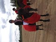 Hest til salg - LUNA STAR