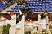 Hest til salg - BLACK BELLIS