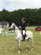 Hest til salg - FLOOR