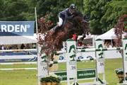 Hest til salg - CORELLO 2