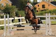 Hest til salg - COSETTE
