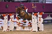 Hest til salg - Vittrupgårds Antares