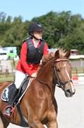 Hest til salg - VIVI