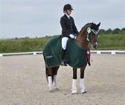 Hest til salg - LINDBERGS MILTON
