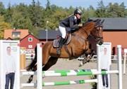 Hest til salg - Evyline PB