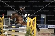 Hest til salg - TANHOLT LUKAS
