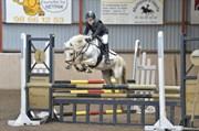 Hest til salg - PENTY