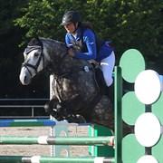 Hest til salg - THORNBROOK STAR