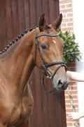 Hest til salg - LUCKY LINDA