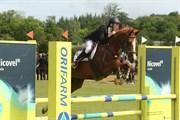 Hest til salg - CADEAUX SKYLIGHT