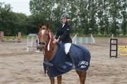 Hest til salg - EPPIE