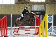 Hest til salg - FLORA
