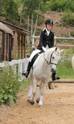 Hest til salg - MY OWN MALOU