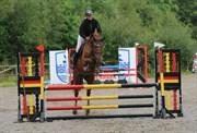 Hest til salg - HEINSGÅRDENS COSMEA
