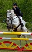 Hest til salg - CHANAU VENTURE