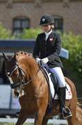 Hest til salg - LADY LEY ROEST