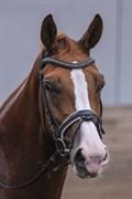 Hest til salg - BILIDT'S GELINA