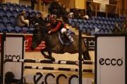 Hest til salg - WHITNEY