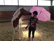 Hest til salg - Savannah Breeze