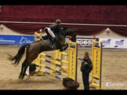 Hest til salg - GARBO GERSDORF