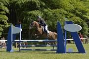 Hest til salg - ANNEMONE