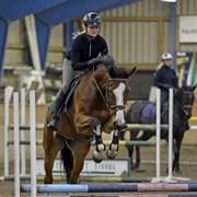 Hest til salg - CHAMOBELL-PKJ