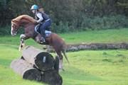 Hest til salg - ABERLOUR GOODWYN (DNK)