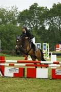 Hest til salg - ØSTERLUNDS COMET