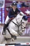 Hest til salg - STALD POPPELS HARMONY