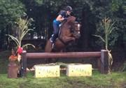 Hest til salg - Bas Sambora