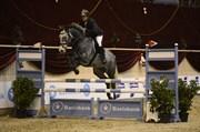 Hest til salg - FRESIA KILEN